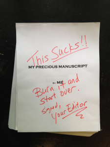 burn your manuscript